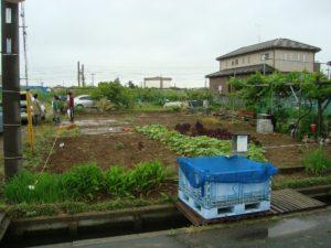 宇都宮市で平家を建てる過程「地盤補強」1